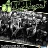 Concert NIGHTLOSERS la Harlequin Mamaia