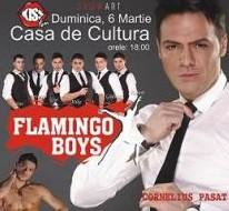 STREAPTESE MASCULIN cu Flamingo Boys la Casa de Cultura
