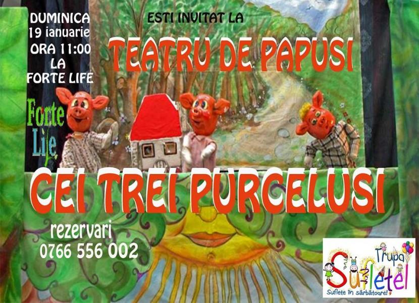 """Teatru de papusi """"CEI TREI PURCELUSI"""" la Forte Life"""