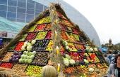 Concerte şi concursuri la Sărbatoarea Recoltei şi a Vinului Dobrogean din Pavilionul Expoziţional