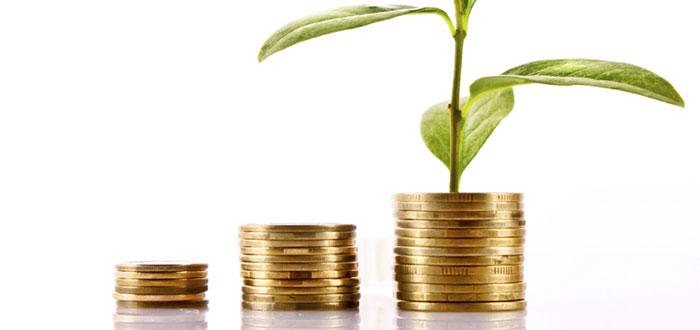 Cum sunt finantate sau se auto-finanteaza ONG-urile