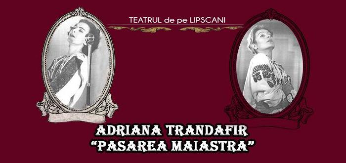 """Teatrul de pe Lipscani. """"PASAREA MAIASTRA"""", la Casa de Cultura"""