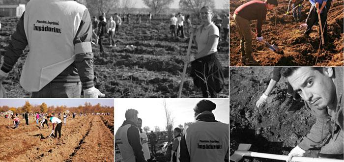 "Voluntarii din Constanta au plantat 43.000 de puieti in campania ""Plantam fapte bune"""
