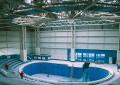 Un nou bazin la Delfinariu și șase delfini aduși gratuit din Europa