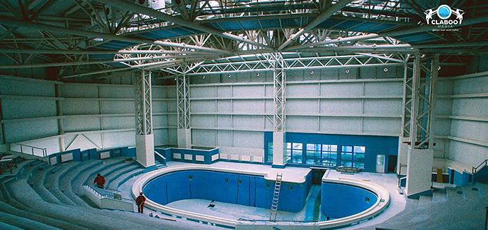 Casa noua pentru delfini! Cum arata NOUL Delfinariu Constanta