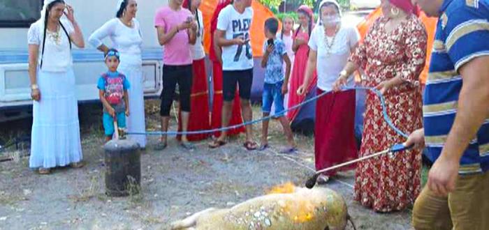 """Grătar cu """"stil"""" într-un camping din Mamaia. O gaşcă de rromi au tăiat un porc!"""