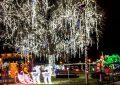 Festivalul Iernii la Constanţa! S-a deschis TĂRÂMUL MAGIC AL CRĂCIUNULUI, în parcul Tăbăcărie.