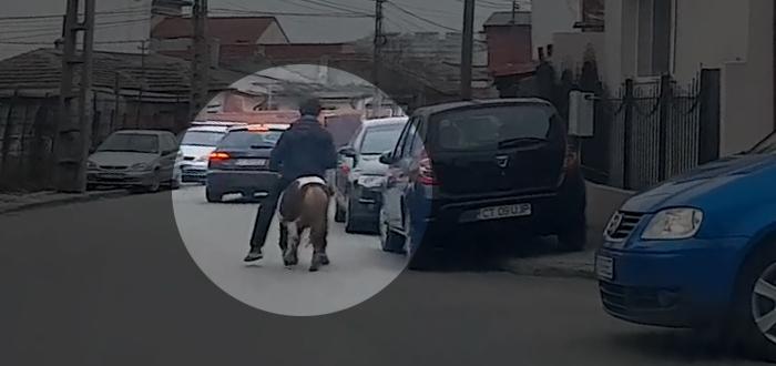 VIDEO. Ponei călărit de un țigan pe străzile Constanței