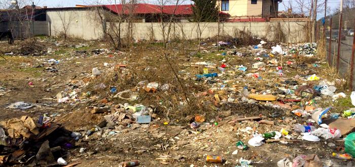 Munți de gunoaie, șobolani și cai la păscut în buricul Constanței. FOTO