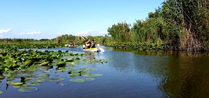 Un weekend cu caiacul în Delta Dunării, cu Dream Explorer