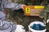 Mii de momeli toxice, amplasate de Primăria Constanța în parcuri și cartiere